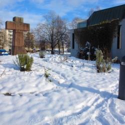 Hildegarten im Winter