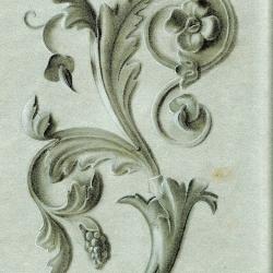 Ornamente Zeichnung